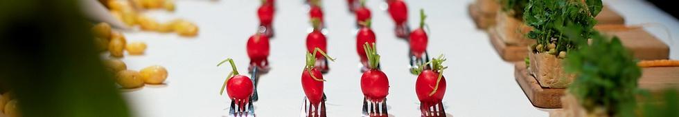 点击查看保加利亚 HRC 烹饪艺术学院(HRC CULINARY ACADEMY)中文介绍页面