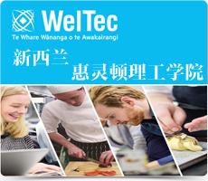 新西兰惠灵顿理工学院(WELTEC, Wellington Institute of Technology )中文页面。